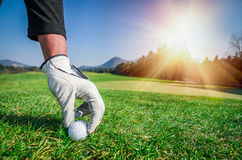 Hand with a glove is placing a golf ball on the ground. Stock Image