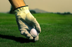 Hand with a glove is placing a tee with golf ball in the ground. Royalty Free Stock Photography