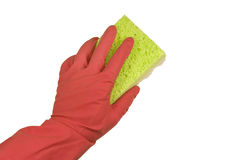 Hand in a glove with a rag. Hand in a pink rubber glove and a green sponge. On a white background Royalty Free Stock Images