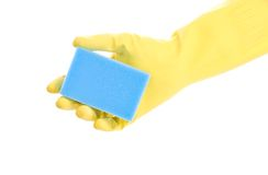 Hand in glove with sponge Stock Image