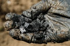Hand in gloves holding a charcoal Royalty Free Stock Photo