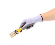 Hand in gloves holds brush. Royalty Free Stock Image
