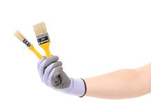 Hand in gloves holds brush. Royalty Free Stock Photography