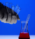 Hand with gloves in laboratory Stock Photos