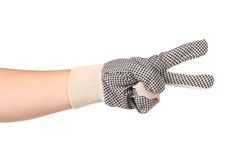 Hand in gloves shows two. Stock Images