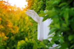 Hand of God. Conceptual photo of an outreached hand reaching upwards to heaven in beautiful natural environment Royalty Free Stock Photography