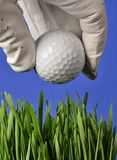 Hand  and Golf Ball. Hand and golf ball in the ruff Royalty Free Stock Image