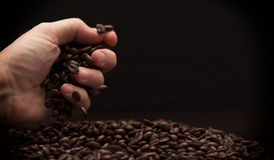 Hand grabbing coffee beans. High contrast image of hand grabbing coffee beans with some being dropped onto a pile with black background stock photos
