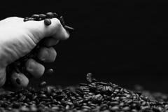 Hand grabbing coffee beans. Stock Photo
