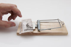 Hand grabbing money. Male hand taking fifty pound note from mousetrap royalty free stock images