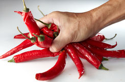 Hand grabing chili Stock Photography