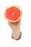Hand with grapefruit Royalty Free Stock Image