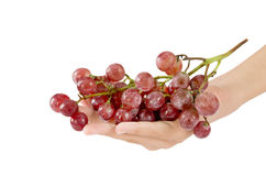 Hand and grapes Royalty Free Stock Images
