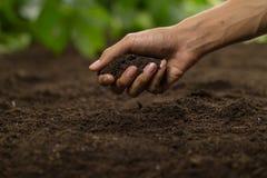Free Hand Grasp Soil At Vegetable Garden Royalty Free Stock Photos - 189176938