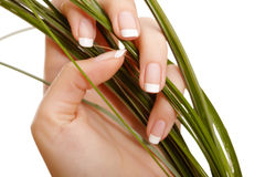 Hand and grass Stock Photos