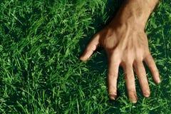 Hand on Grass. Closeup shot of a man's hand on green grass Stock Photo