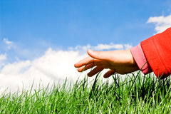 Hand upon the grass. Child hand reaching the grassy surface stock photo