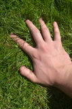 Hand on the Grass Royalty Free Stock Photo