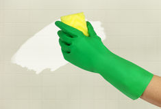 Hand in green glove with sponge Stock Image