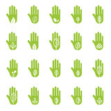 Hand with green leaf logo elements Stock Photography