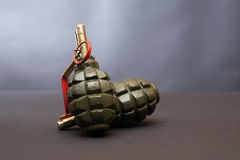 Hand Grenades Royalty Free Stock Image