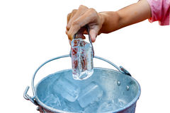 Hand grip the ice from the ice bucket isolate white background w Royalty Free Stock Image