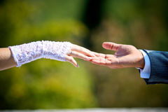 Hand of the groom and the bride Stock Photos