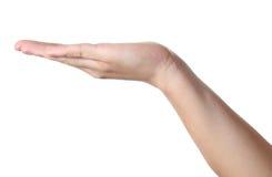 Hand hält etwas Stockfoto