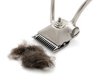 Hand hairclipper. A hand hairclipper with a tuft of cut hair Royalty Free Stock Photo