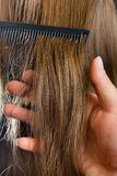 Hand of hairdresser holding strand of hair Stock Images