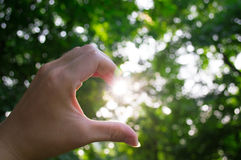 Hand half heart sunshine Royalty Free Stock Image