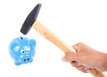 Hand with hammer about to smash piggy bank Stock Image