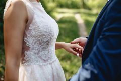 Hand in hand brides stock photography