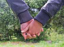 Hand in hand. Couple holding hands in the sunlight Royalty Free Stock Photo