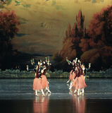 Hand in hand with the dance -ballet Swan Lake Stock Photography