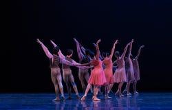 Hand- in- Hand - klassisches Ballett ` Austen-Sammlung ` Stockbilder