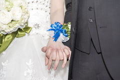 Hand in hand in wedding Royalty Free Stock Image