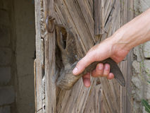 Hand on a handle  door Royalty Free Stock Photo