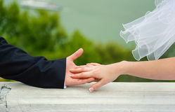 Hand in hands. Wedding couple Royalty Free Stock Images