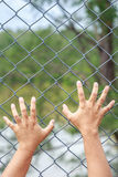 Hand hanging on metal chain link fence Stock Photos