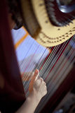 Hand and harp Stock Photography