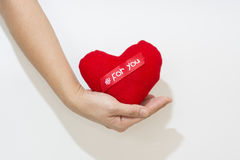 Hand and Heart isolate on the white background.  royalty free stock photos