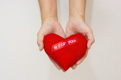 Hand and Heart isolate on the white background.  royalty free stock photo