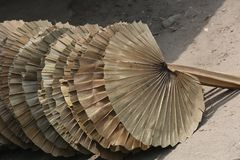 Hand held fan leaf palm leaf cutting. In Summer Bangladesh`s weather become very hot above 40-45 degree calices. Once the peoples were depending on hand held Stock Photos