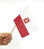 Hand Held Polish Flag. Hand holding Polidh flag over white Stock Images
