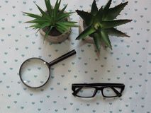 Hand-Held Reading Magnifier, Magnifying Glass, a Pair of Glasses with Black Frame and Green Flowers on Patterned Background.. Reading habits. Eye Health & stock image
