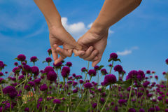 Hand for help and love. On garden location Royalty Free Stock Photos