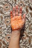 Hand with henna tatoo Stock Photo
