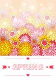 Hand het getrokken de lente van letters voorzien Stock Foto