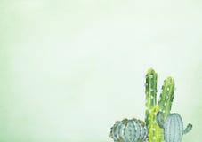 Hand het getrokken waterverf schilderen van cactus op groene achtergrond royalty-vrije illustratie